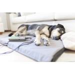 Apparecchi per fisioterapia veterinaria
